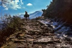 Camino de La Quiana a Montes